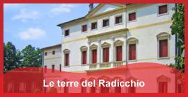 Secondo_itinerario_Le_terre_del_Radicchio